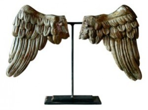 Human-Angel-wings_Humanity-Healing