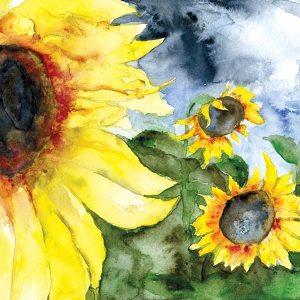 Sunflowers_Humanity-Healing
