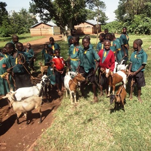Vocational-Center_Animal-Husbandry_Humanity-Healing-International