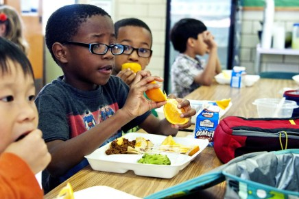 Recent study highlights need for healthier children's lunchboxes