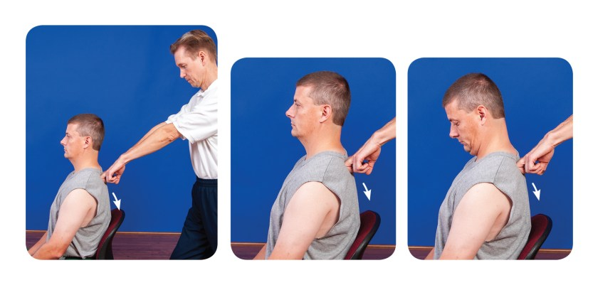 Active assisted soft tissue release for the upper back erector spinae