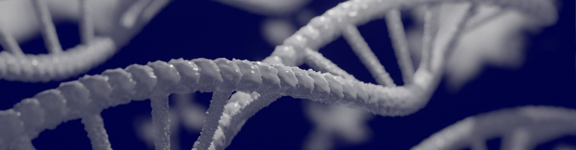 close up of DNA double helix
