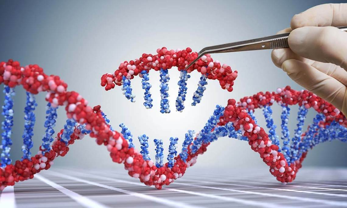 illustration of gene being removed from strand of dna