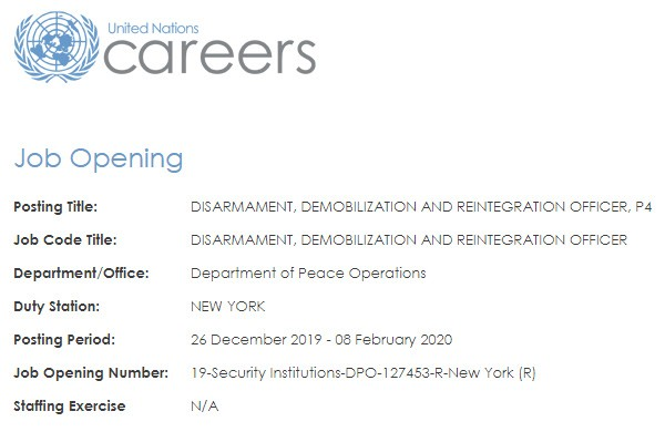 Un Careers Disarmament Officer 600