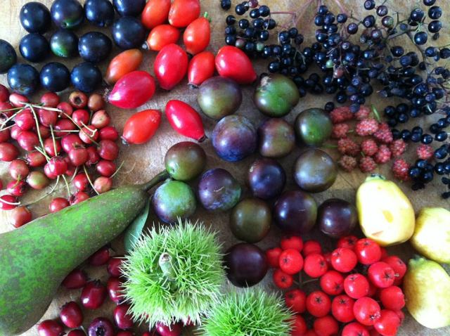Foraged fruits