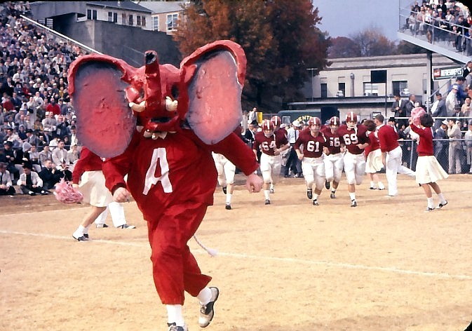 Melford Epsey, Jr. dressed as an elephant mascot before the days of Big Al.