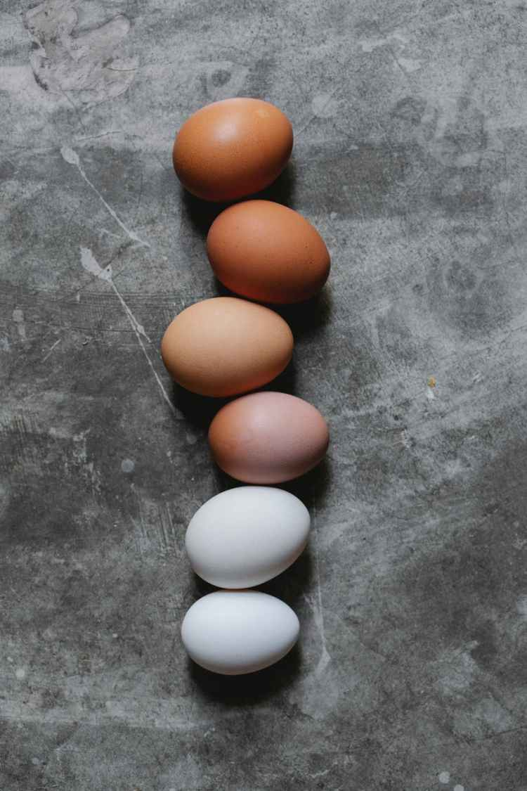 assorted chicken eggs placed on gray table in kitchen