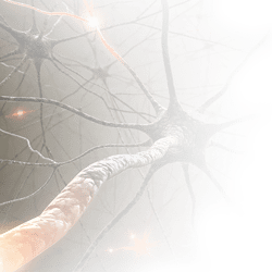 neural01s