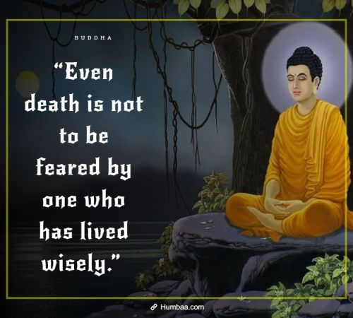 """Even death is not to be feared by one who has lived wisely."" By Buddha on Humbaa"