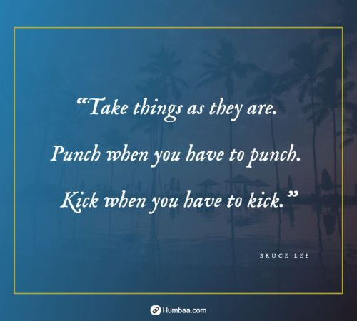 """Take things as they are. Punch when you have to punch. Kick when you have to kick."" by Bruce Lee on Humbaa"