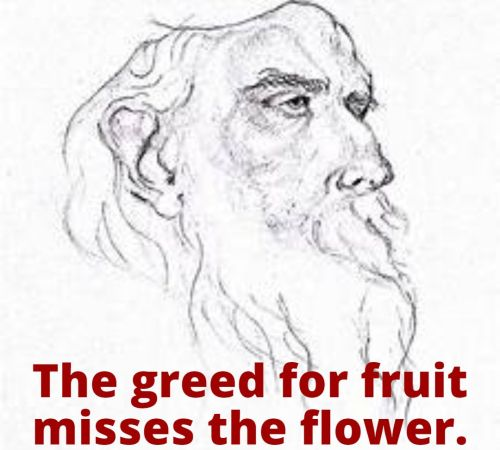 The greed for fruit misses the flower. By Rabindranath Tagore on Humbaa.com