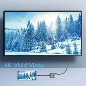 4k vivid video