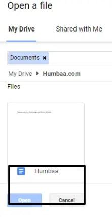 Humbaa Google Docss »