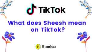 What does Sheesh mean on TikTok