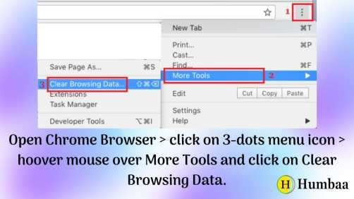 Clear Browsing Data From Google Chrome Browser
