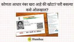 How to verify Aadhaar Number online Marathi how can you know if it is real