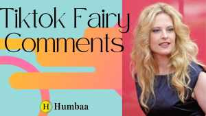 tiktok fairy comments