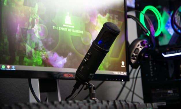 Copyright or Copy-wrong: Streamers and the Digital Millennium Copyright Act