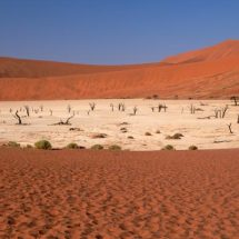 Dead Vlei (wide view)