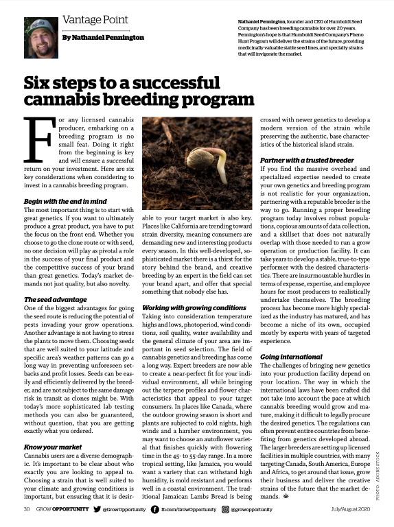 Six Steps to Successful Cannabis Breeding Program