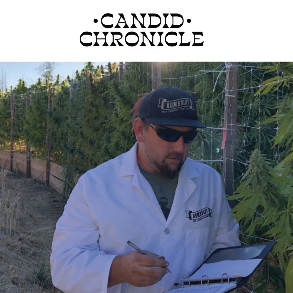 Candid Chronicle