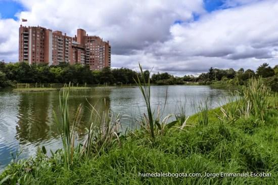 Humedal Córdoba
