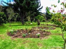Jardin biodiverso