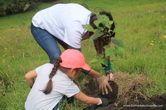 plantacion_arboles_hpc (132 de 223)