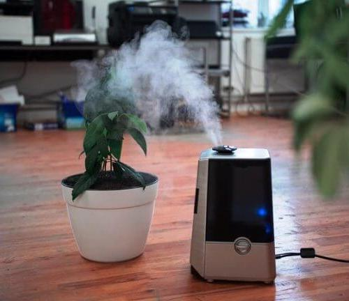 Image of benefits of humidifier in summer