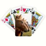 three_horses_in_a_row_playing_cards-rb0274e9c4a8147fc805632bf5b7ed517_fsvzl_8byvr_324