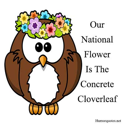 concreate cloverleaf