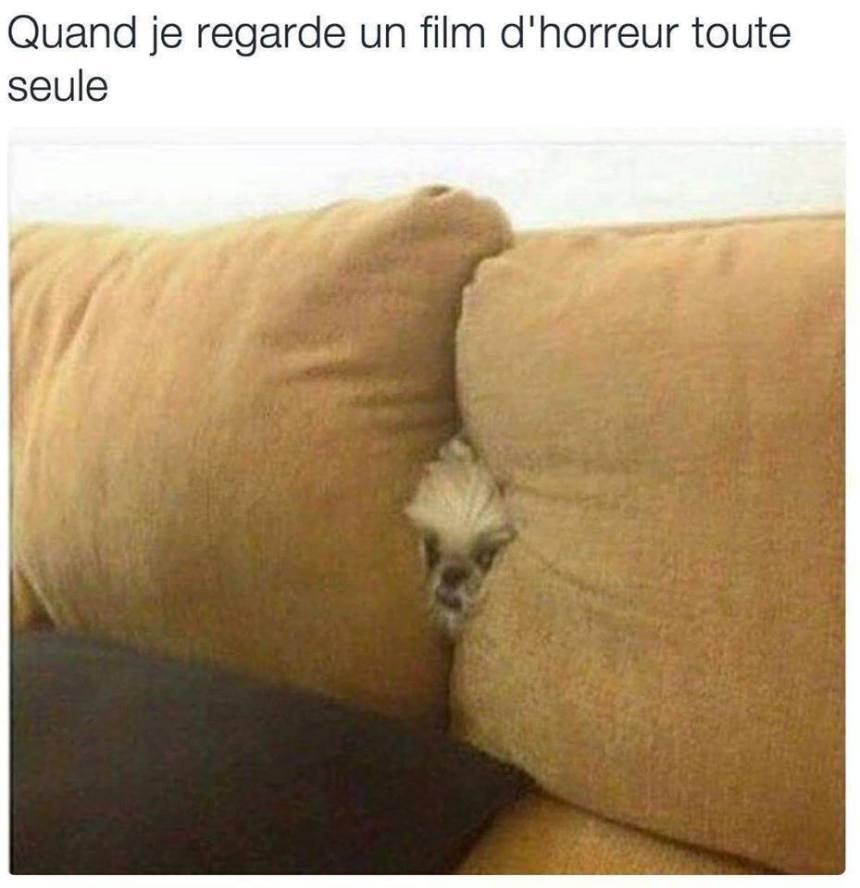 Quand je regarde un film d'horreur toute seul