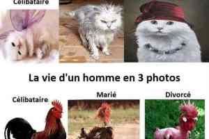 La vie d'une femme en 3 photos