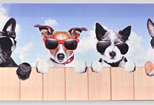 Tableau toile Chiens - Humour