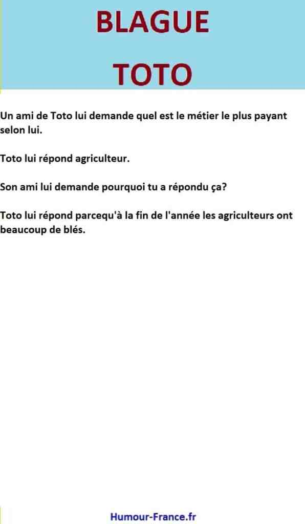 Un ami de Toto lui demande quel est le métier le plus payant