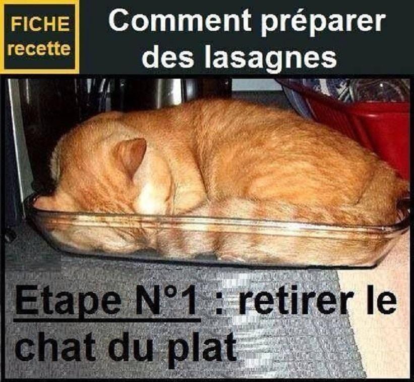 Comment préparer des lasagne