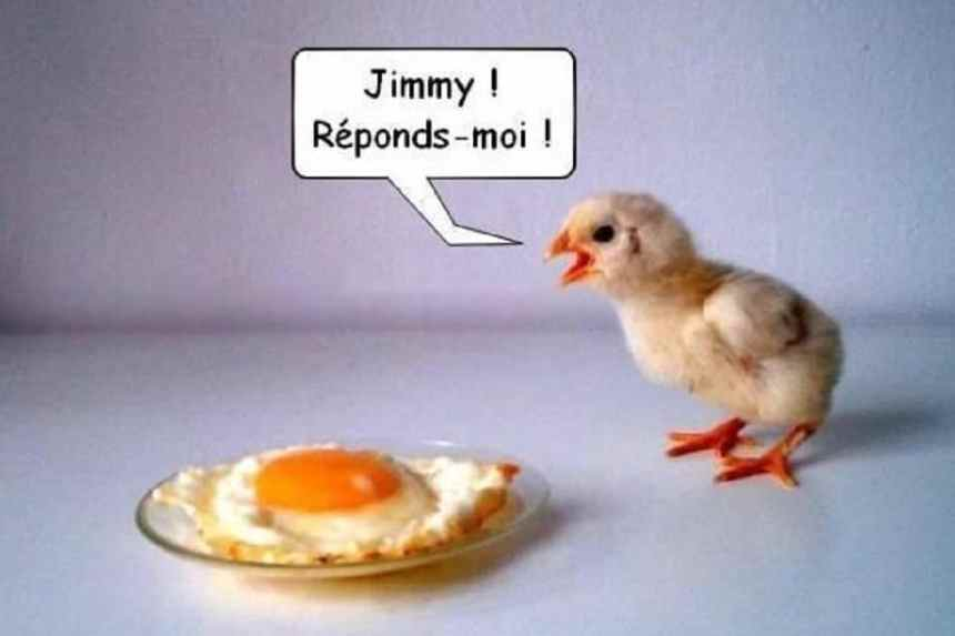 Jimmy ! Répond-moi !