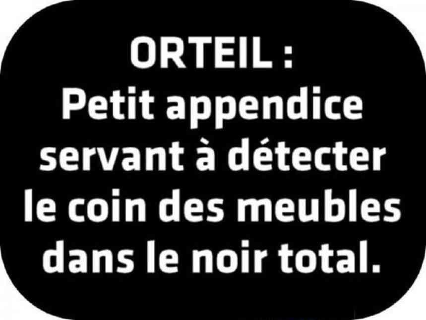 ORTEIL: Petit appendice...