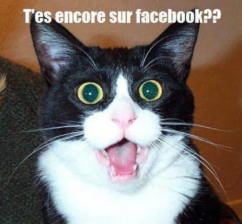 Tes encore sur Facebook