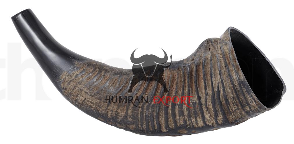 buffalo horn bugle