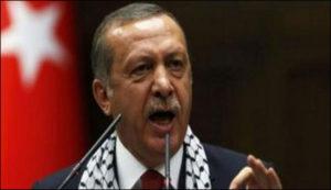 turky