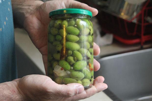 olives2015B-9