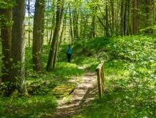 Steg über den Ammelbach