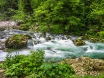 An der Quelle der Bistrica