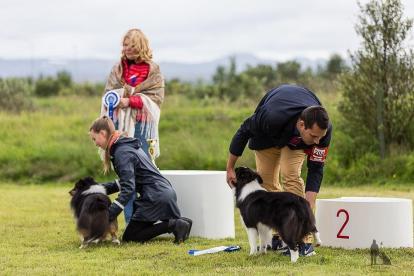 Hundasýning 24.07.2016 í Víðidalnum 792