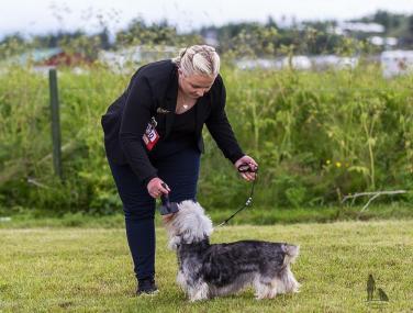 Hundasýning 24.07.2016 í Víðidalnum 810
