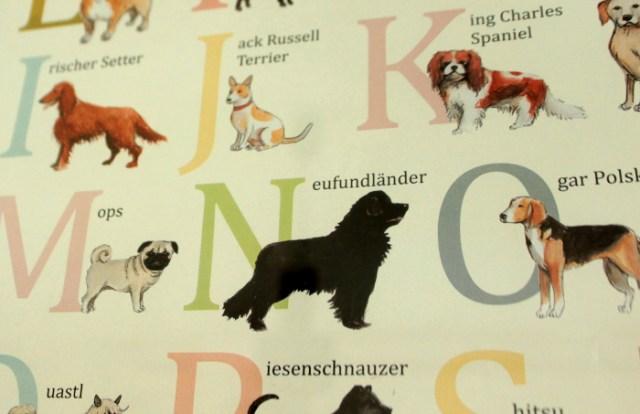 ABC Poster Kinder Buchstaben Hunderassen