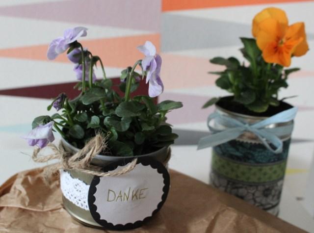 DIY Pflanztopf aus Hundedosen