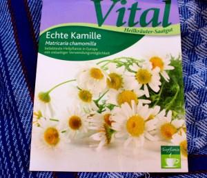 Kamille selbst säen Gartenkalender Sommerdrink Kamillentee selbermachen