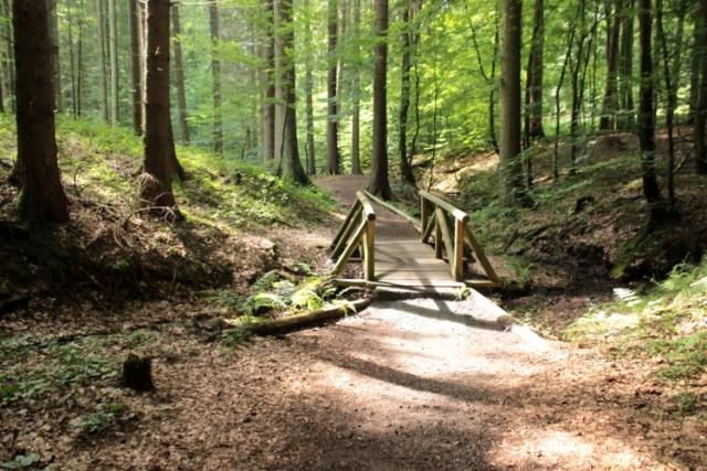Wandern mit Hund schöne Wanderwege Deutschlands Wanderausflug Odenwald